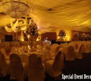 Golden Dream Royal Ceiling Drape