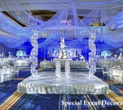 Crystal Indian Wedding