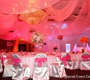 Pink Royal Ceiling Drape Signature Grand