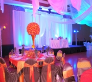 Royal Backdrop with Canopy