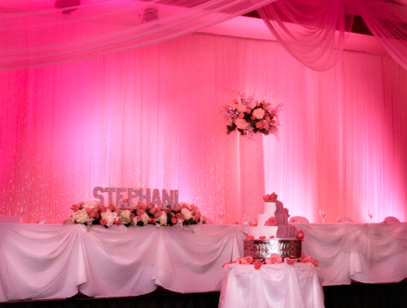 Pink Quince Backdrop